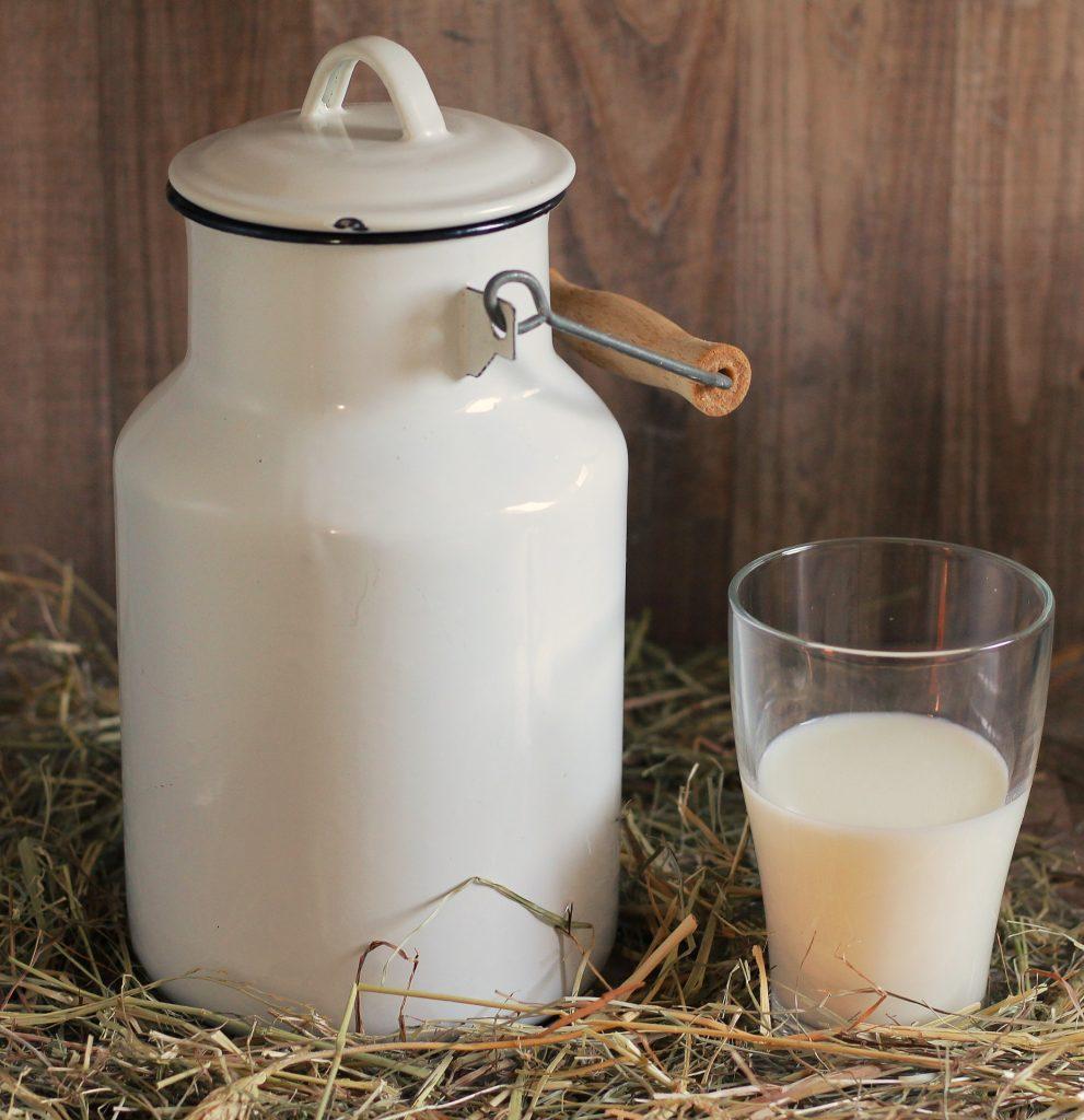 молоко для сыроделия, рецепты сыров