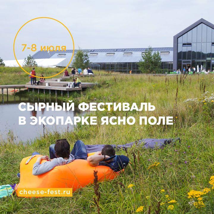 Ясно поле Сырный фестиваль.
