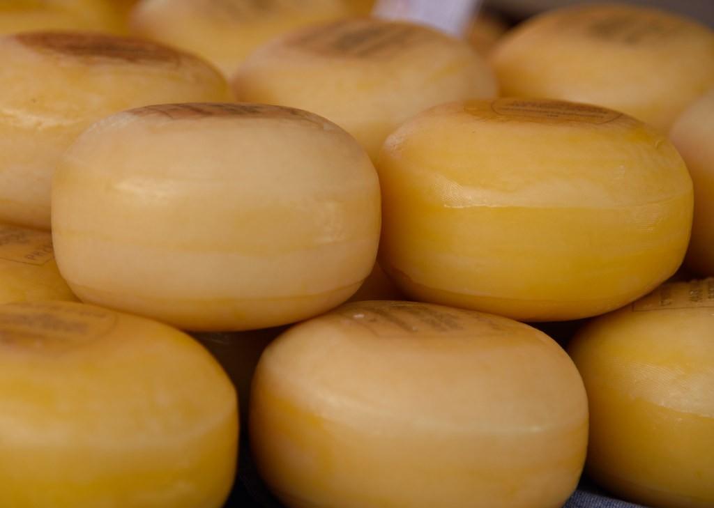 Рецепт сыра Гауда в домашних условиях